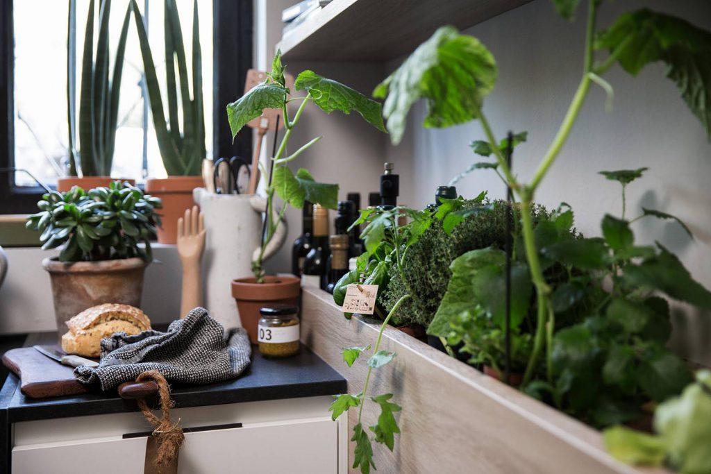 SieMatic Urban keuken met verse kruiden.